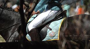 Equestrian-tmb