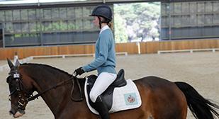 2019-GGS-Equestrian-tmb
