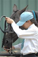 MS_Equestrian_04