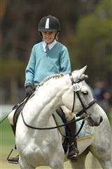 MS_Equestrian_06
