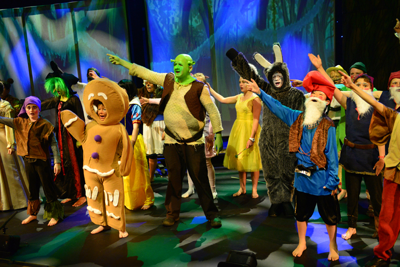 shrek essays Shrek, an 'academy award winning animated feature film,' produced by dreamworks animation had its debut in 2001 surprisingly, it was based upon william steig's 1990 fairy tale picture book.
