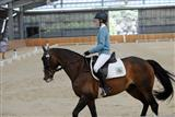 2019-Equestrian Dressage Day_20