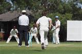 2019-Cricket-12
