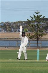 2019-Cricket-17