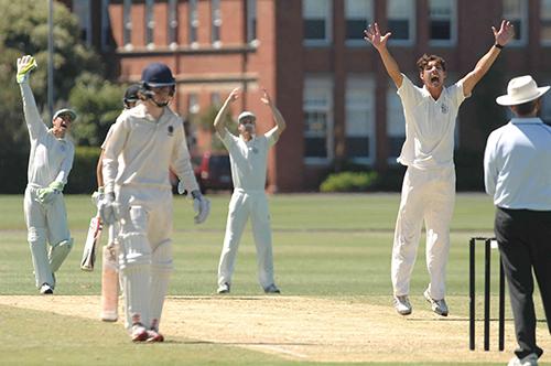 Cricket Geelong Grammar School